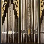01 organ